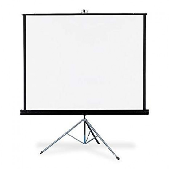 Apollo 70x70  Electric Projection Screen