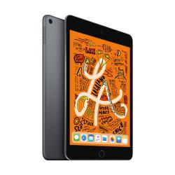 Apple iPad Mini  7.9 Inch 64GB Wifi Space Gray Tablet